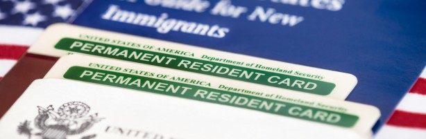 What Are Your Green Card Insurance Options? Featured Image